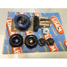 Kit pistoncini + gommini + pastiglia (cassetto) Abbacchiatore Lisam V8 V8EVO V7